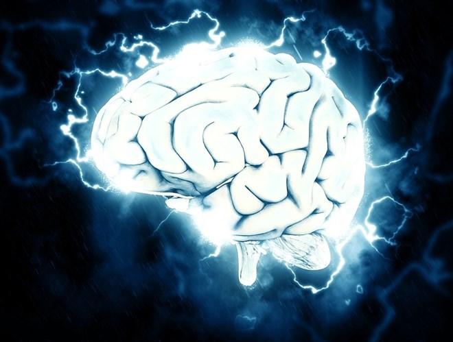 neuralink-quiere-cerebro-humano-pueda-comunicarse-directamente-forma-inalambrica-nube_fotonoticia_20170421134649_660