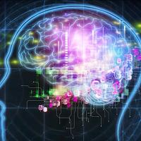 La última de Elon Musk: Conectar el cerebro con ordenadores